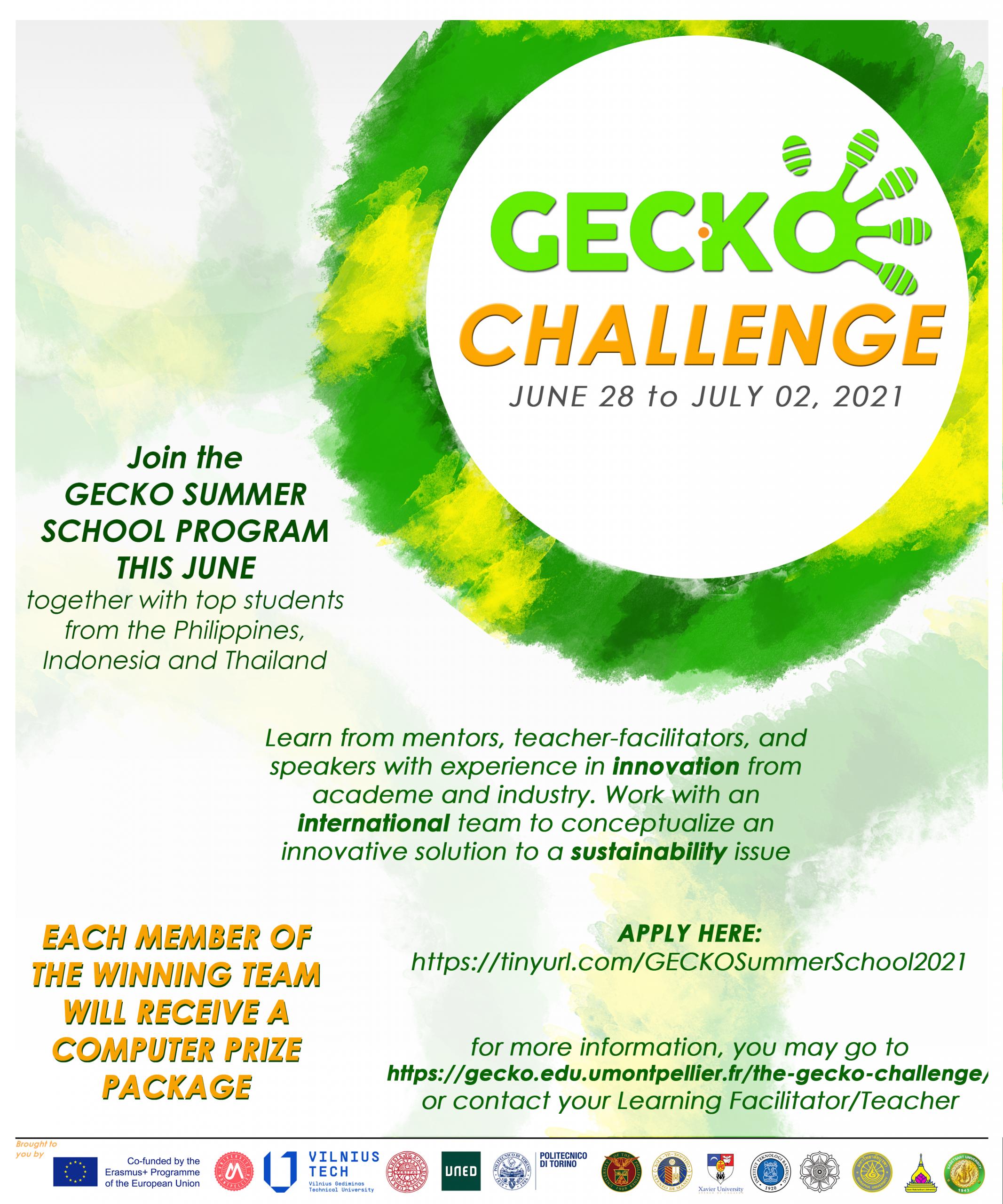 The GECKO Challenge: Summer School (June 28 – July 2, 2021)