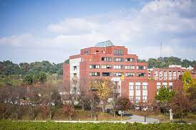 """ONLINE"" KU Short-term Exchange from Kanazawa University"